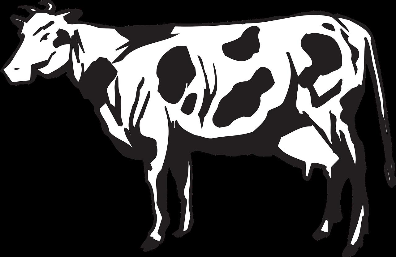 Los granjeros de la bolsa, la leche y los dividendos